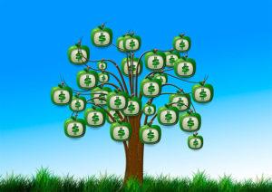 mejorar nuestras finanzas en cada primavera