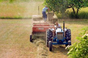 trabajadores agricolas y covid-19